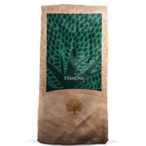 Essential Stamina 12 kg