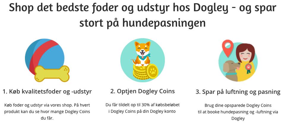 Dogley Coins banner